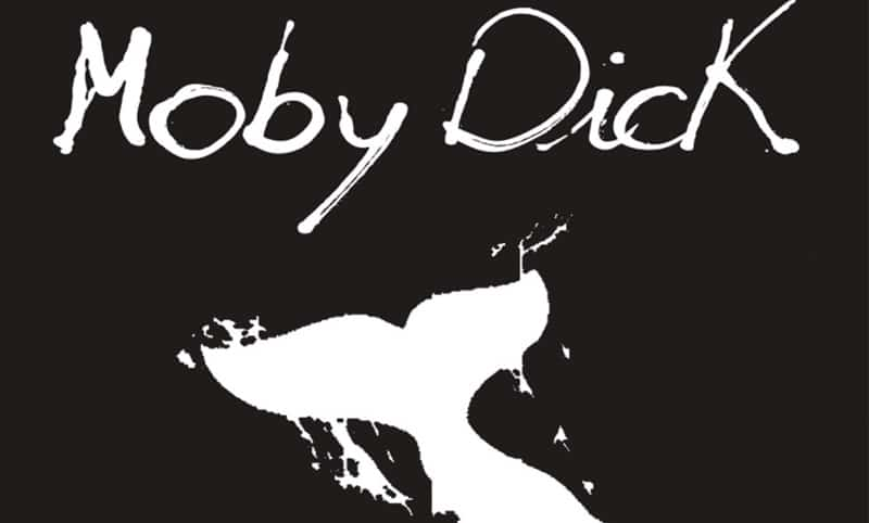 """Moby Dick e la bianchezza della balena sono il filo conduttore di questo biblio-trip """"Contempliamo abissi bianchi"""" in Ostinata e Contraria"""