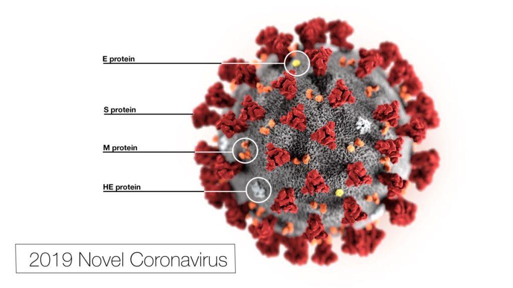 Coronavirus e Alien: la lotta contro la paura