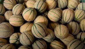 PrimaValle Epidemic FASE 2 cascata di meloni