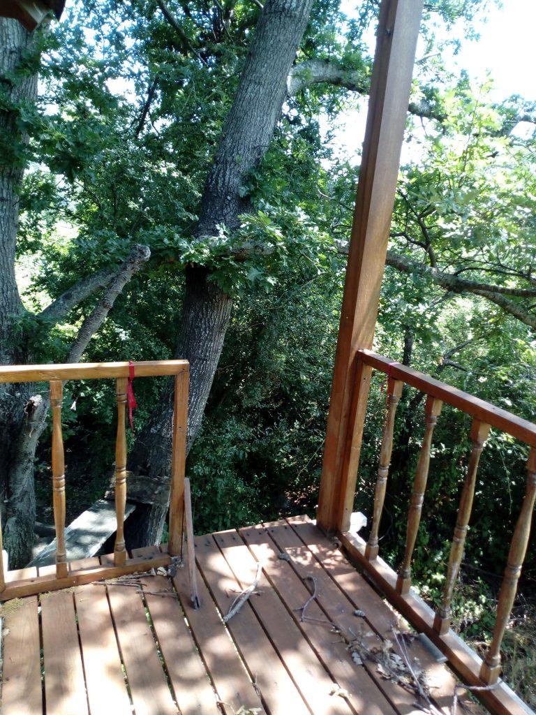 La Tana dei Ghiri: casa sull'albero
