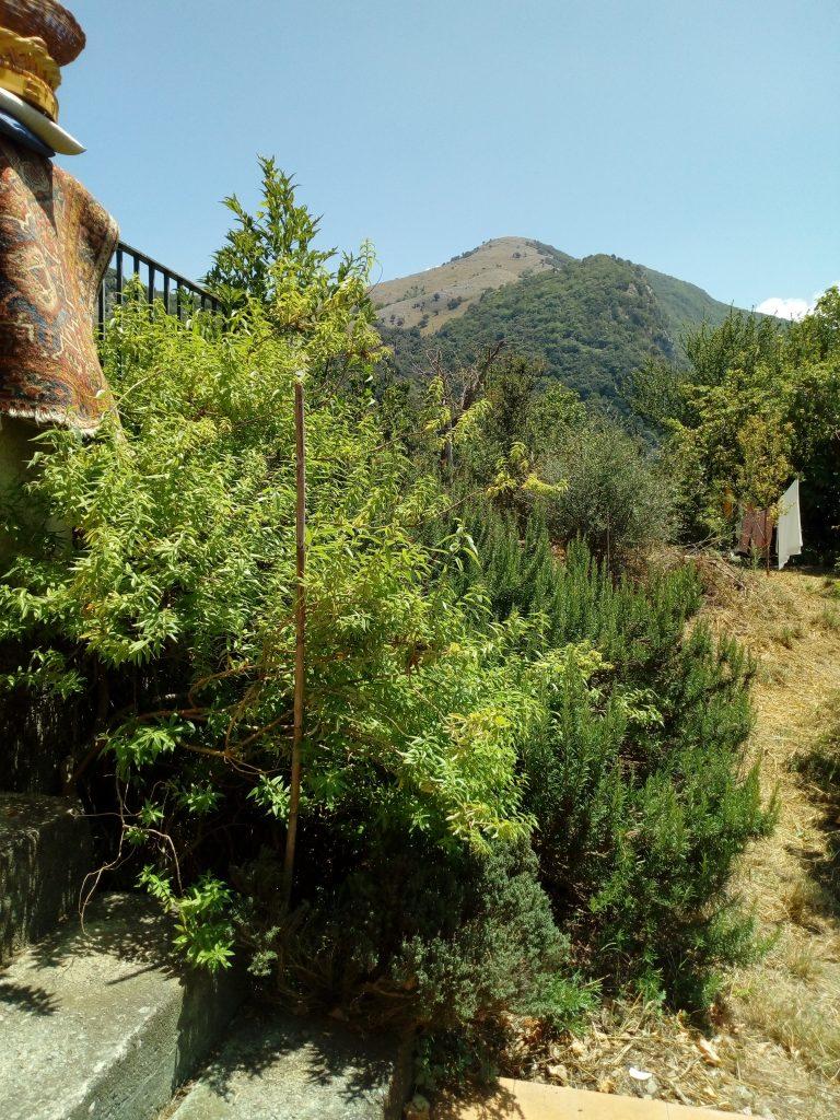 La Tana dei Ghiri, colline lucane
